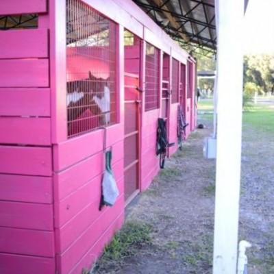 Boarding Barn AKA Pink Barn
